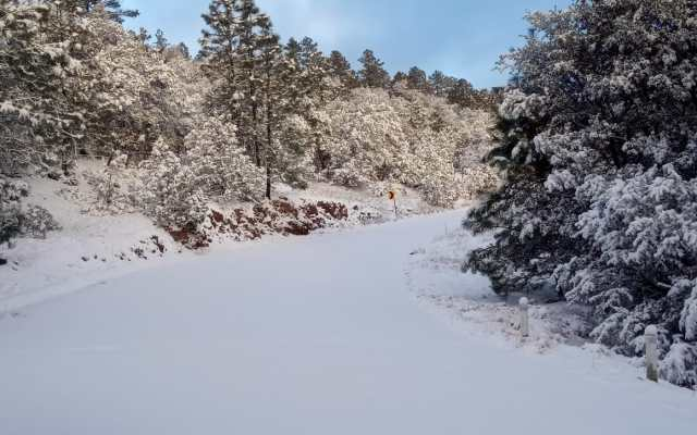 Pronostican nevadas en montañas de Chihuahua y Durango - Tormenta invernal en Chihuahua. Foto Notimex, archivo.
