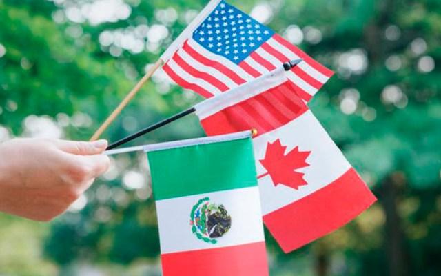 Embajador Landau califica de 'hito' la aprobación del T-MEC en Senado de EE.UU. - Banderas de EE.UU., Canadá y México. Foto Especial