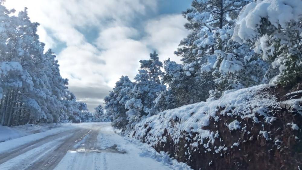 Menos 10 grados en Chihuahua y Durango - Foto de @GobiernoEdoChih