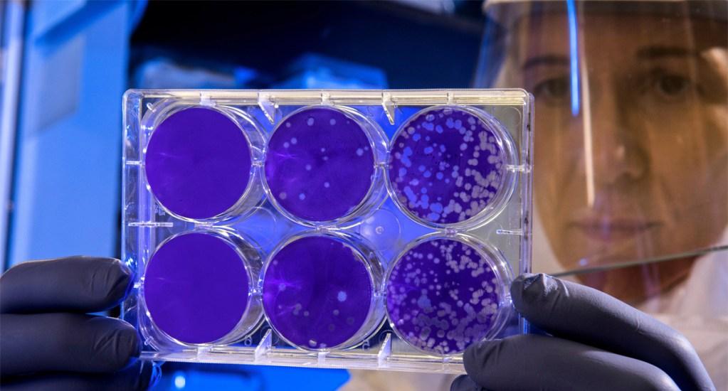 Posible portador de coronavirus en Reynosa viajó a Wuhan, China; Tamaulipas activa protocolos - OMS convoca reunión de emergencia por nuevo brote de virus en China