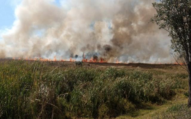 Incendio consume pastizal en Xochimilco; ya fue controlado - Foto de Twitter @SGIRPC_CDMX