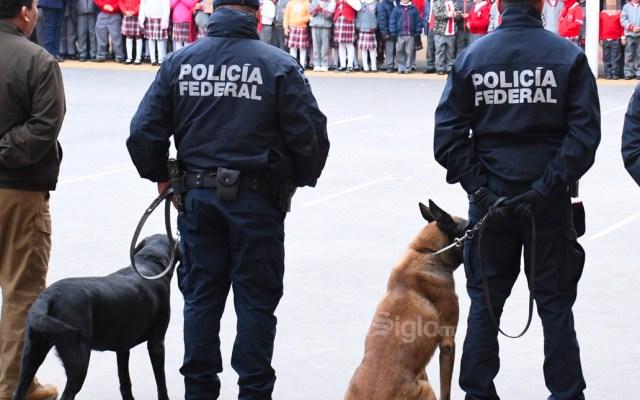 """#Video Binomios caninos presentes en arranque del operativo """"Mochila Segura"""" en Torreón - En la escuela España de Torreón, binomios caninos de la Policía Municipal de Coahuila estuvieron presentes en el arranque del operativo Mochila Segura"""
