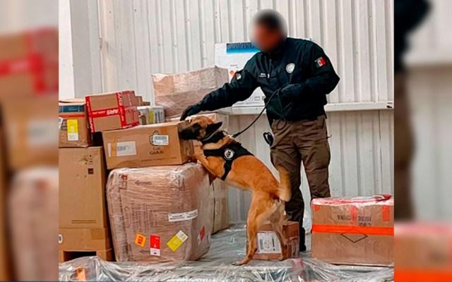 FGR asegura armas y drogas en empresas de paquetería - Productos ilegales asegurados en empresas de paquetería. Foto de FGR