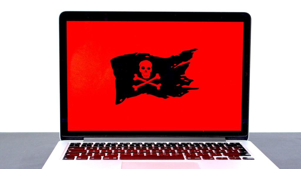 AI pide prohibir a grupo israelí exportar productos de espionaje contra activistas - Spyware. Foto de Michael Geiger / Unsplash