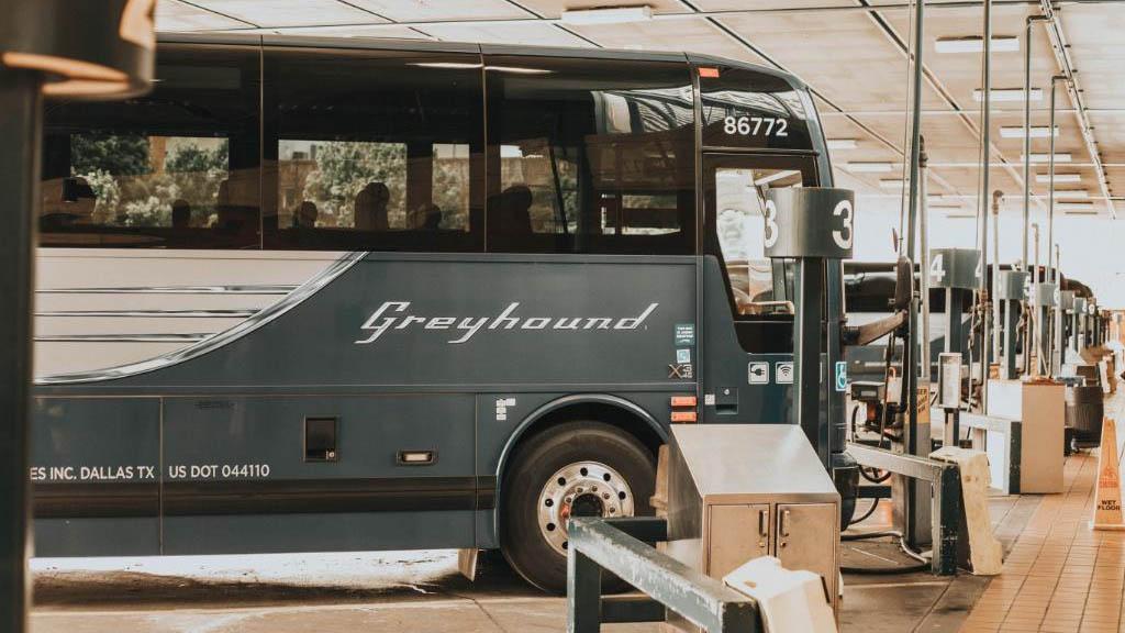 Greyhound ya no permitirá revisiones migratorias en autobuses - Autobús Greyhound empresa Estados Unidos