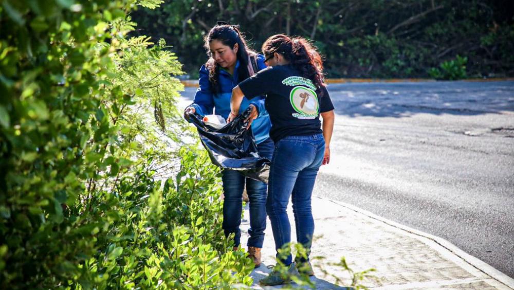 Voluntarios limpian manglares en Isla Mujeres - Foto de Ayuntamiento de Isla Mujeres