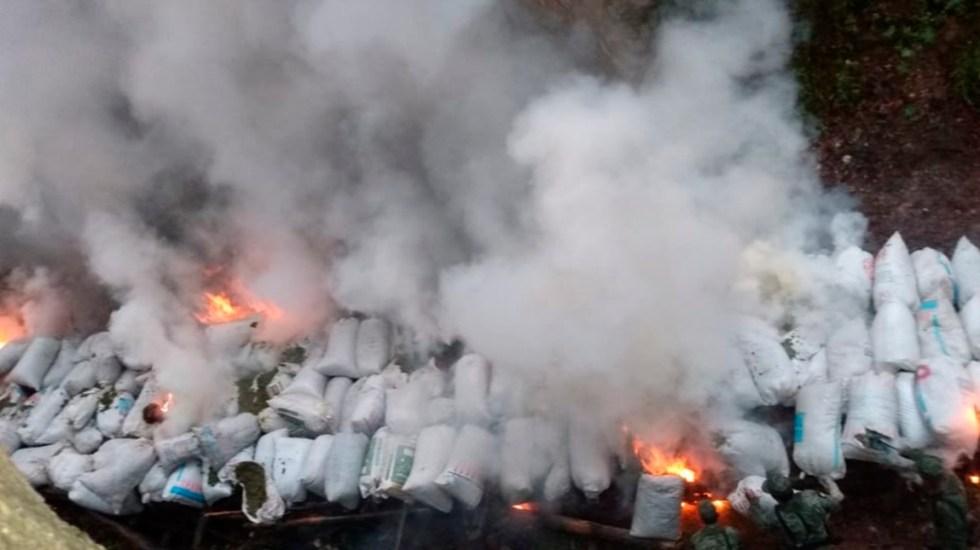 Sedena incinera en Durango casi dos toneladas de mariguana - Mariguana incinerada en Durango. Foto de Sedena