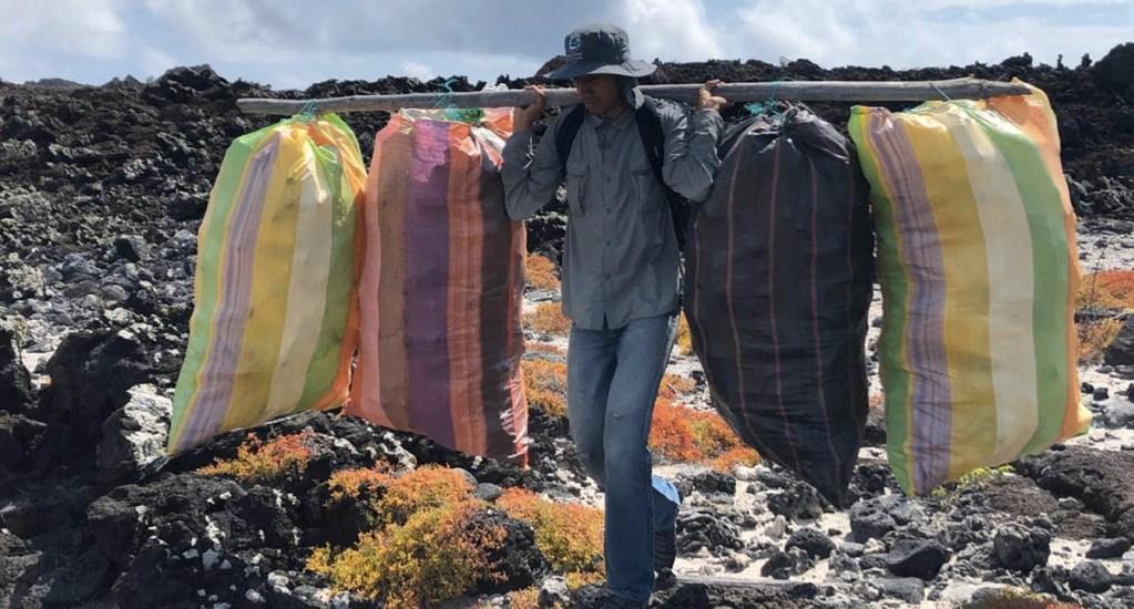 Retiran más de 8 toneladas de basura de las islas Galápagos - Parque Galápagos islas basura limpieza