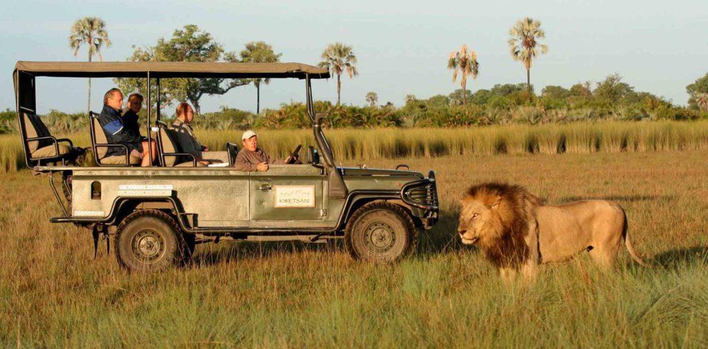 Botswana, un mágico destino africano