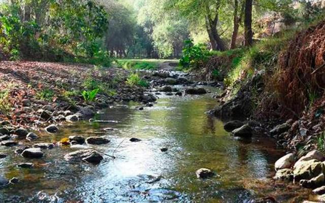 Cierran áreas naturales en Tlaxcala por COVID-19 - La Coordinación General de Ecología anunció el cierre temporal de las áreas naturales y de recreación a fin de combatir la propagación del COVID-19