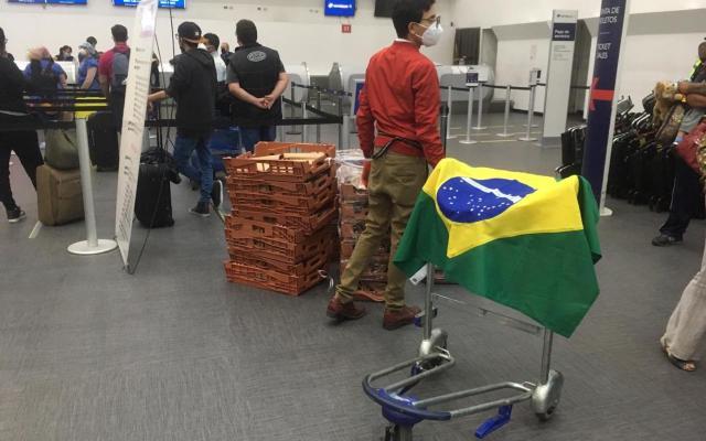 SRE coordina vuelo humanitario de repatriación recíproca con Brasil - Foto de SRE