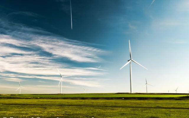 Freno a energías renovables aleja inversión, considera el sector privado - Turbinas eólicas. Foto de Arteum.ro para Unsplash