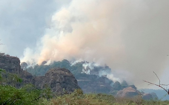 Combaten incendio forestal en Tepoztlán; habría sido causado por paseantes - incendio tepozteco tepoztlán