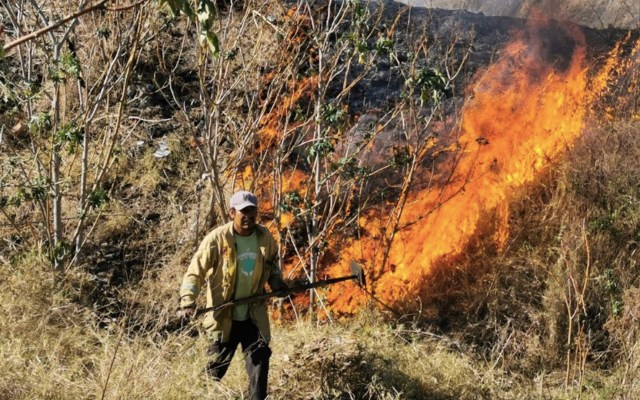 Incendio forestal consume paraje en Tlajomulco, Jalisco - Foto de @SemadetJal