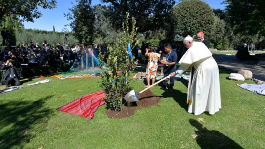 Papa Francisco autoriza apertura de jardines vaticanos para campamento de verano - papa jardines vaticanos