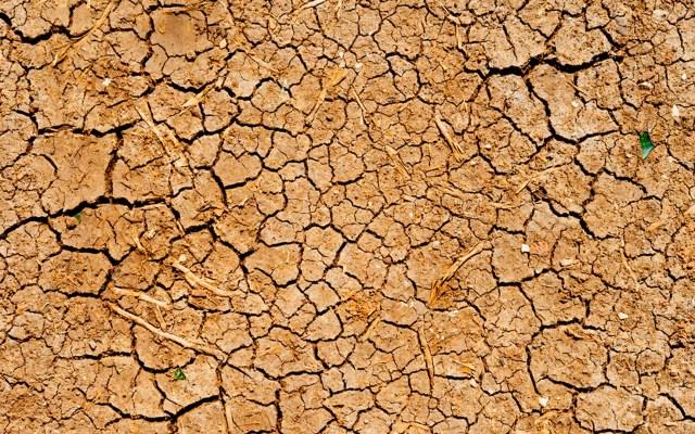 Cifras sobre la desertificación y la sequía en el mundo - desertificación sequía