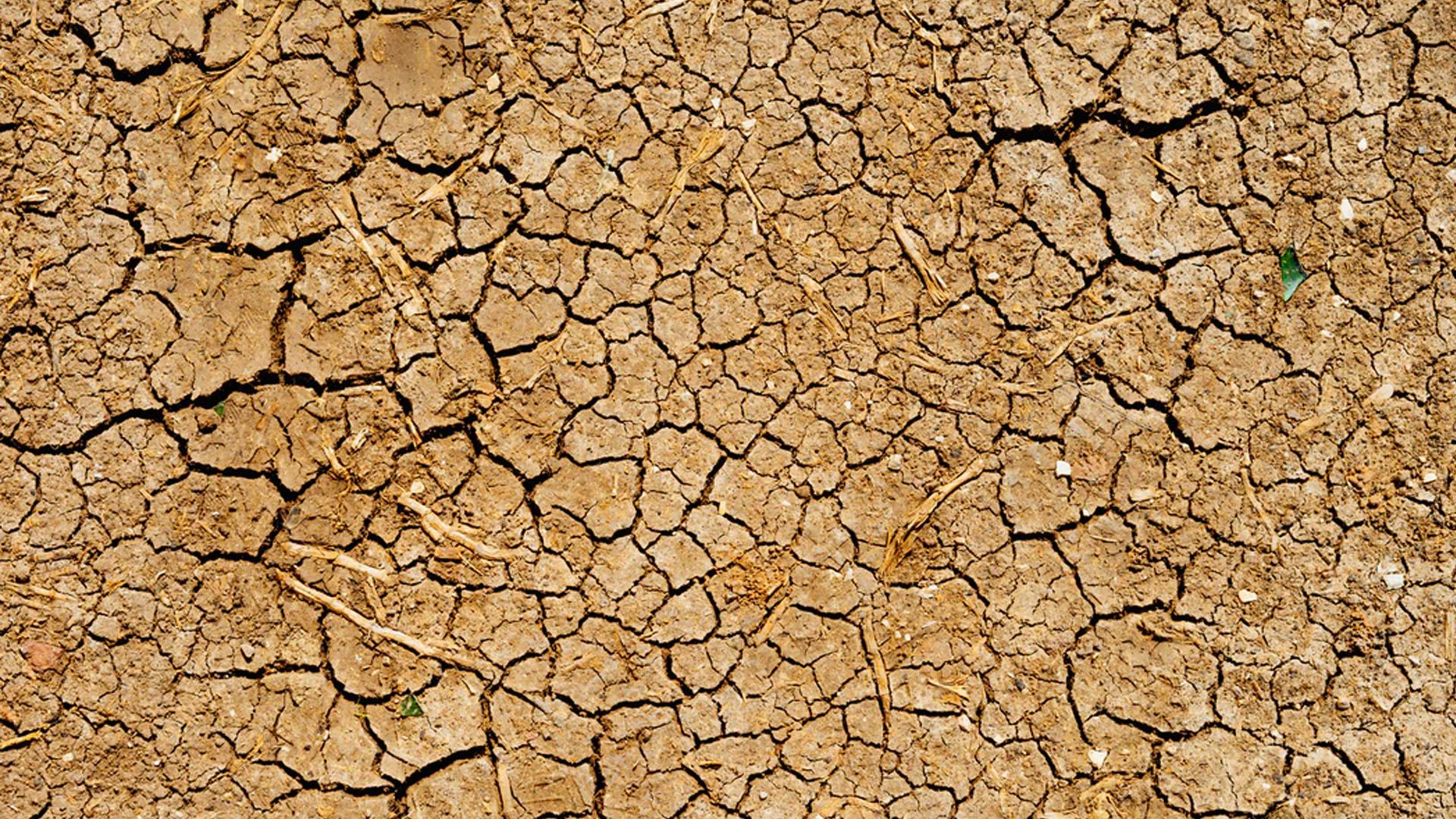 desertificación sequía