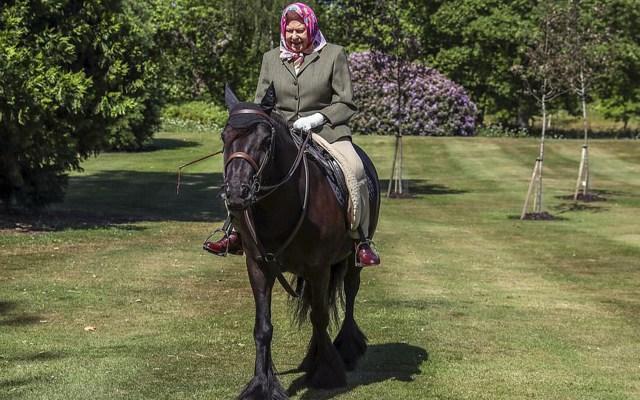 Reina Isabel II monta a caballo en su primera salida desde el confinamiento - Reina Isabel II montando a caballo. Foto de PA / DailyMail.