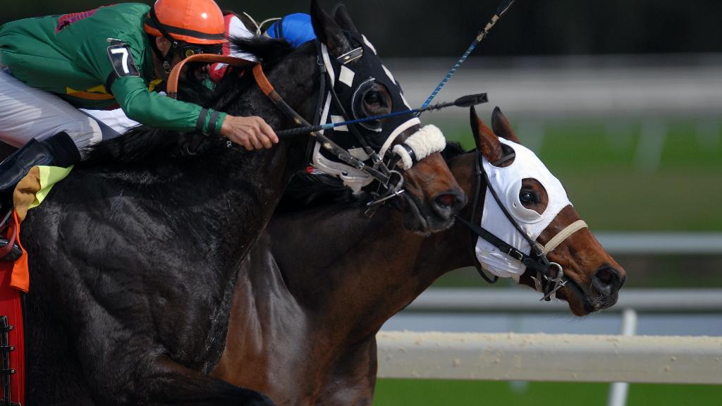 Jinetes del Hipódromo no han percibido dinero en 4 meses, denuncia César Mora - Carreras caballos Hipódromo jinetes