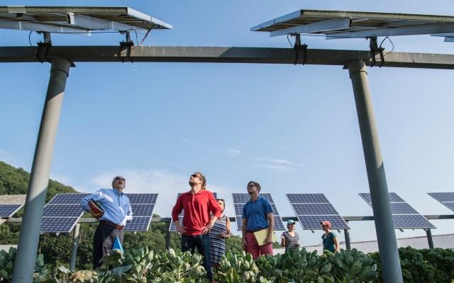 Priorizar el medio ambiente generaría 395 millones de empleos en una década - Instalación de paneles solares. Foto de Science in HD / Unsplash
