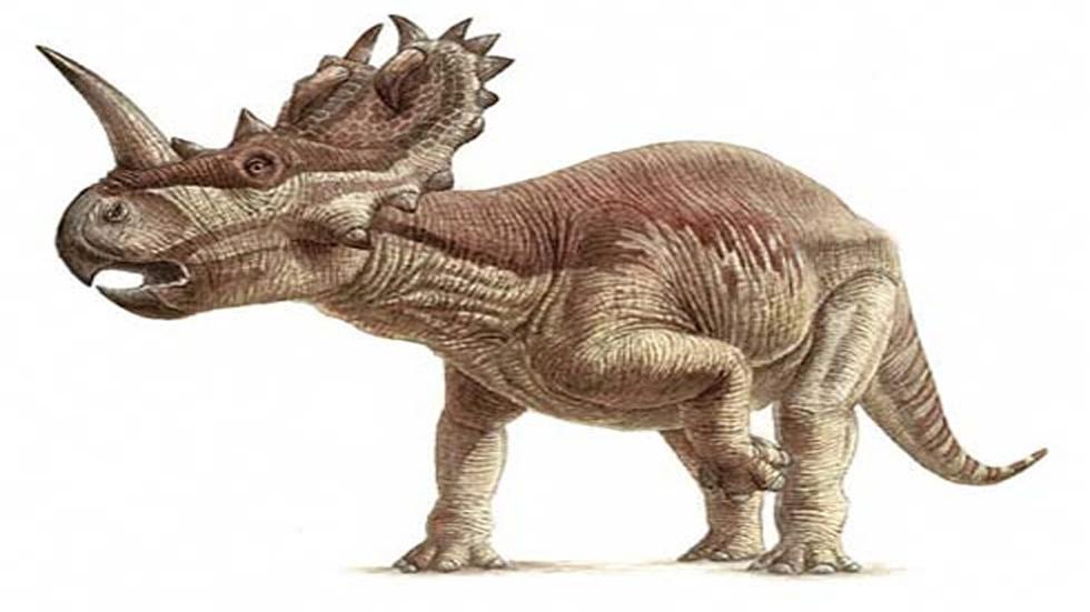 Por primera vez, descubrieron un cáncer de hueso en un dinosaurio