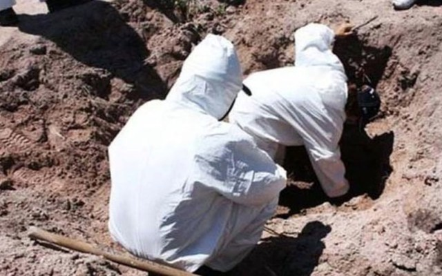 Autoridades de Colima trabajan en fosas clandestinas localizadas en Tecomán - Foto de Contexto Colima