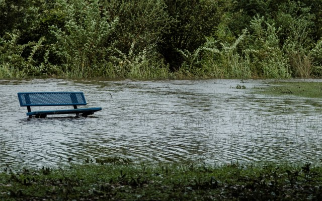 """""""No ha pasado lo peor"""", advierten mayores afectaciones en Estados Unidos por Laura - Inundaciones en parque de Louisiana por 'Laura'. Foto de EFE"""