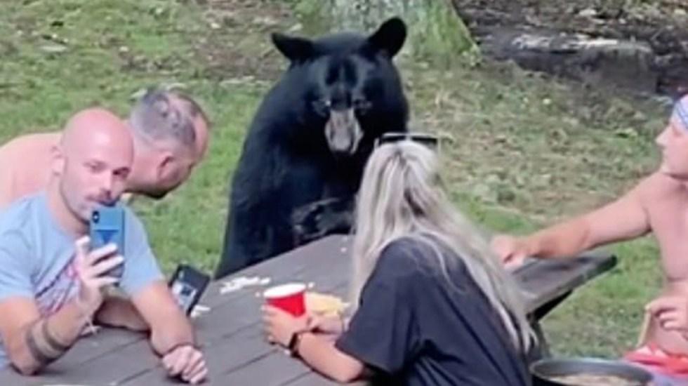 #Video Oso salvaje se une a familia durante picnic en Maryland - Oso sorprende a familia durante picnic en bosque de Maryland. Captura de pantalla