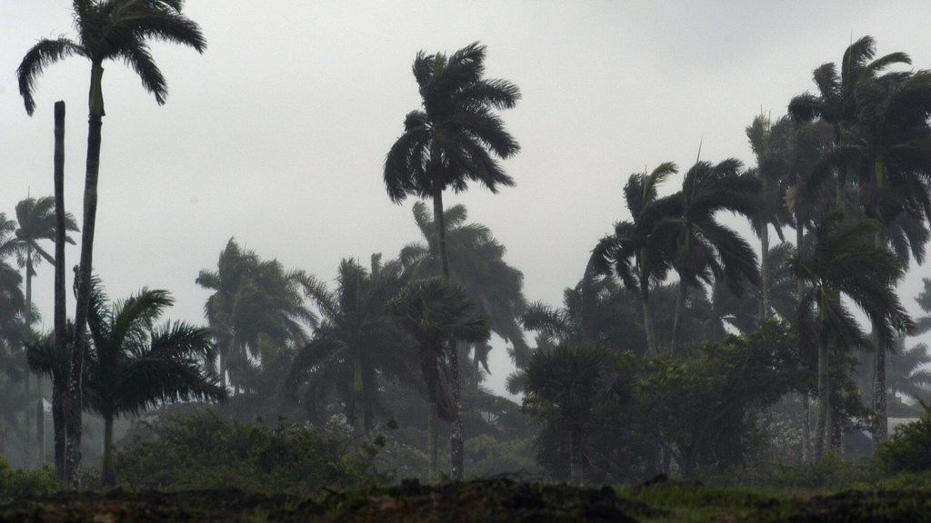 Crece alerta por Laura a su paso por el Golfo de México; Marco se degrada a depresión tropical - Tormentas tropicales vientos huracanes