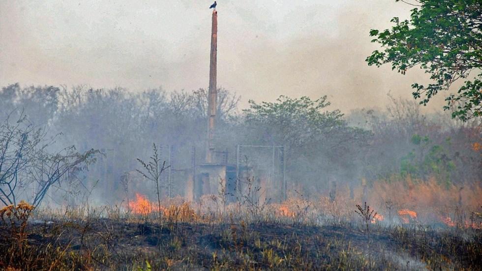 Incendios en Brasil alcanzan su segundo mayor número en 10 años - Foto de EFE