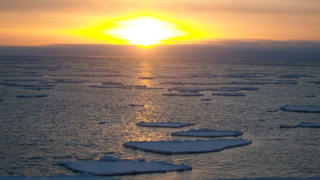 Advierten retroceso sin precedentes de hielo en el Mar de Bering - Hielo marino en el Mar de Bering. Foto de Leo Macías / Wikimedia