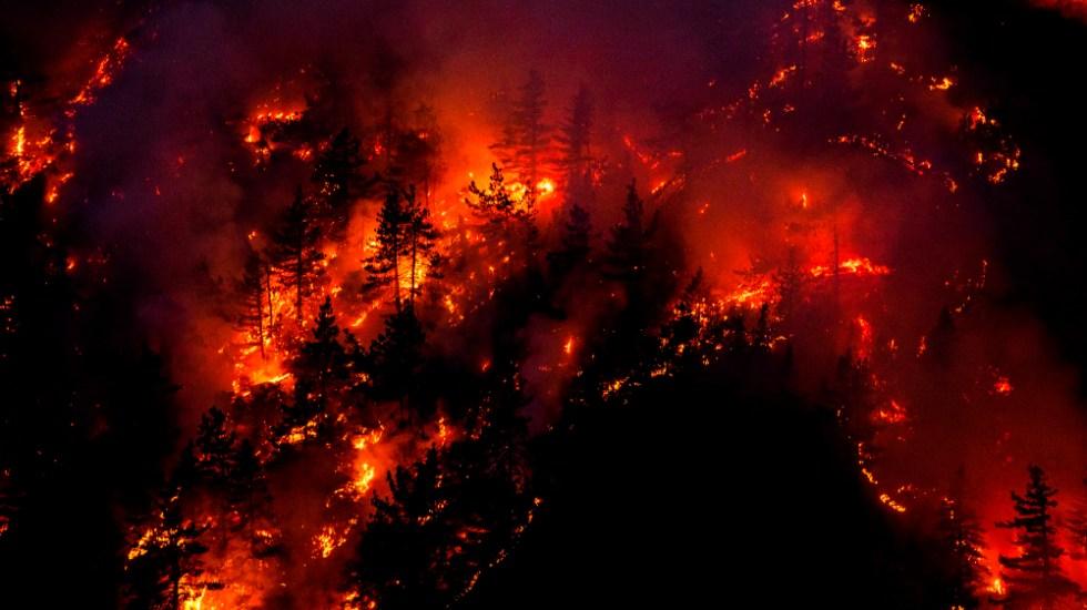 Trump visitará California el lunes para informarse sobre los incendios - Foto de EFE