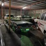 Matamoros Tamaulipas GOPES aseguramiento vehiculos aves tigres 15