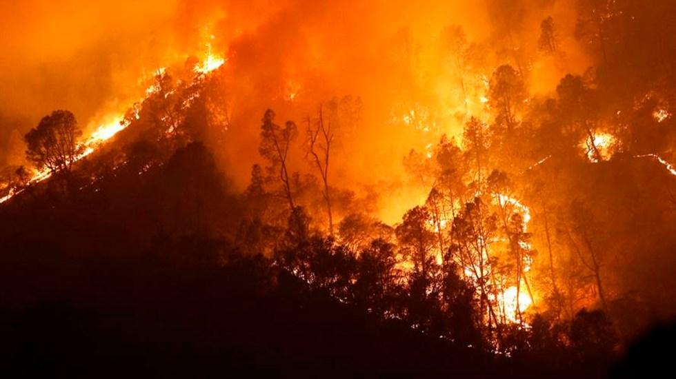 """Ola de calor mantiene """"vivos"""" a dos de 20 incendios que arden en California - Fuertes vientos dificultan la contención de los incendios en California. Foto EFE"""