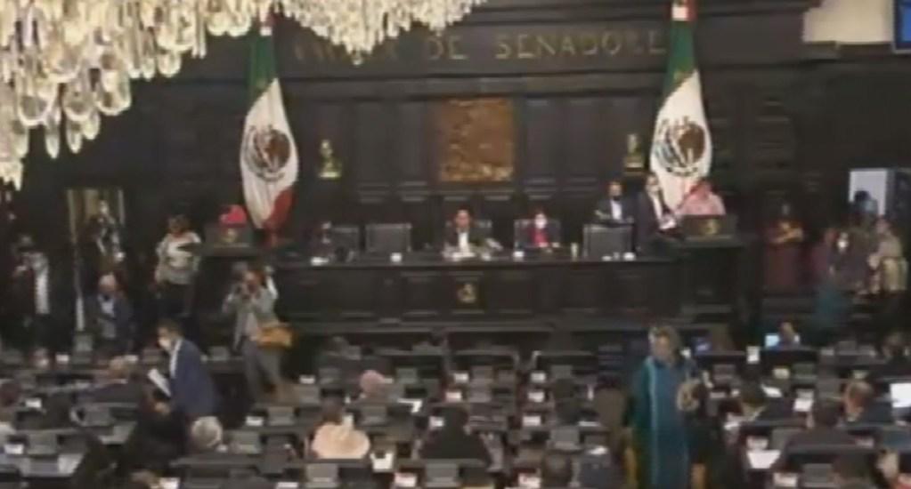 #EnVivo Senado de la República analiza desaparición de Fideicomisos. Noticias en tiempo real