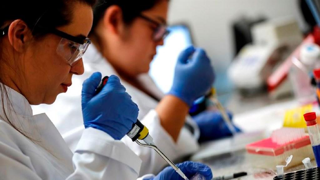Identifican factor que eleva contagio de la cepa británica de COVID-19 - Identifican en Brasil factor que eleva el contagio de cepa británica de COVID-19. Foto EFE