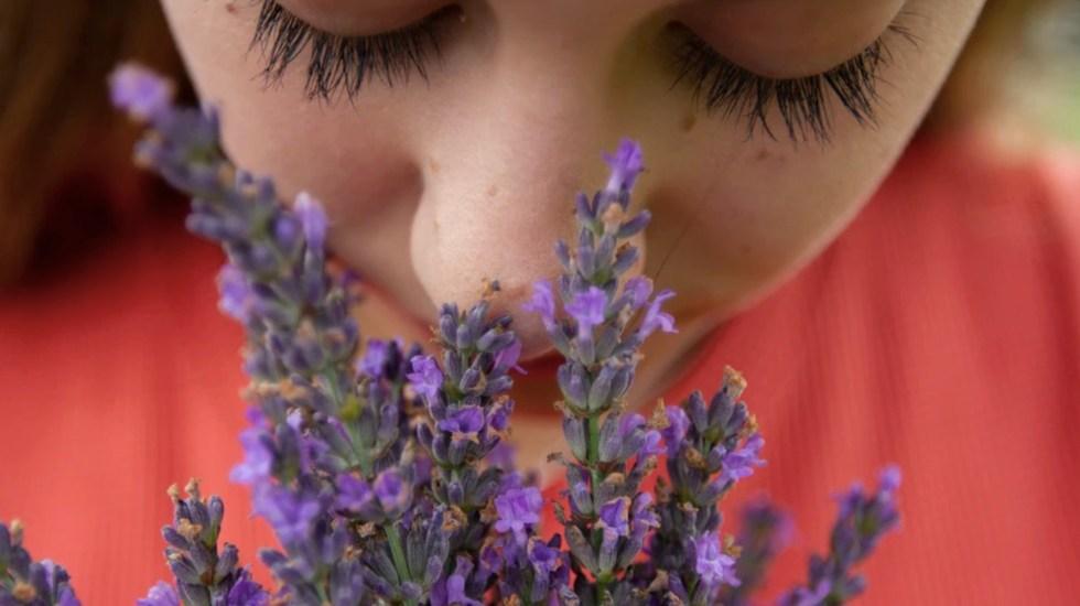 Pérdida del olfato y del gusto por el COVID-19 puede durar hasta cinco meses - Foto de Elly Johnson @lejo