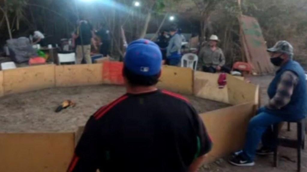 Detienen a 11 tras clausura de palenque clandestino en Escobedo, Nuevo León - Foto de ForoTV