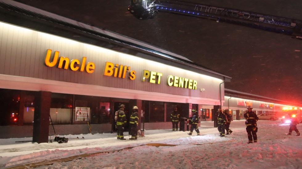 Incendio en tienda de mascotas de Indianápolis mata a 100 animales - Tienda de mascotas de Indianápolis donde incendio mató a 100 animales. Foto de @IFD_NEWS