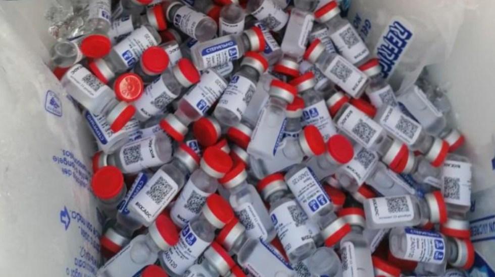 No hay denuncias sobre venta de vacunas falsas en México: AMLO - Falsas vacunas en Campeche. Foto de SAT