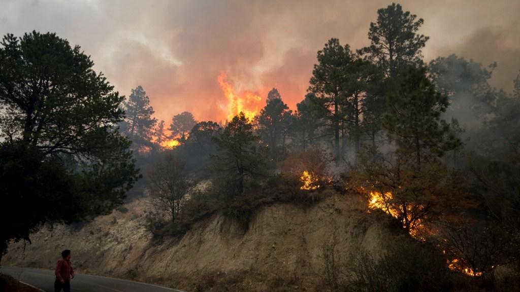 Declaran emergencia en Coahuila por incendio en Sierra de Arteaga; suman 4 mil hectáreas afectadas - Incendio en límites de Coahuila y Nuevo León. Foto de EFE
