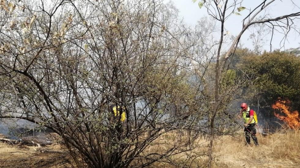 Fuerte incendio en el Bosque de Chapultepec; no hay lesionados - Incendio Ciudad de México Bosque de Chapultepec