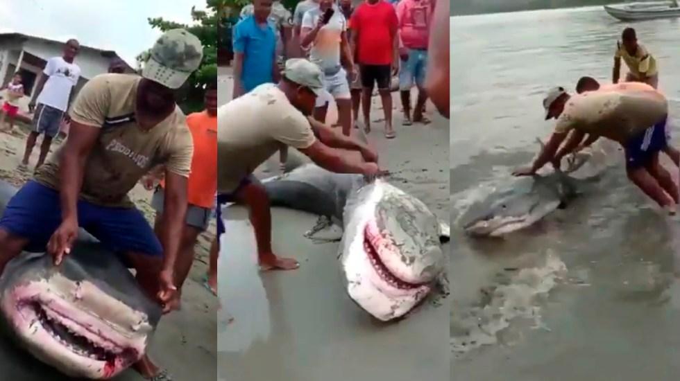 #Video Maltratan a tiburón en playa de Colombia y después lo devuelven al mar - Maltrato a tiburón en playas de Colombia. Captura de pantalla