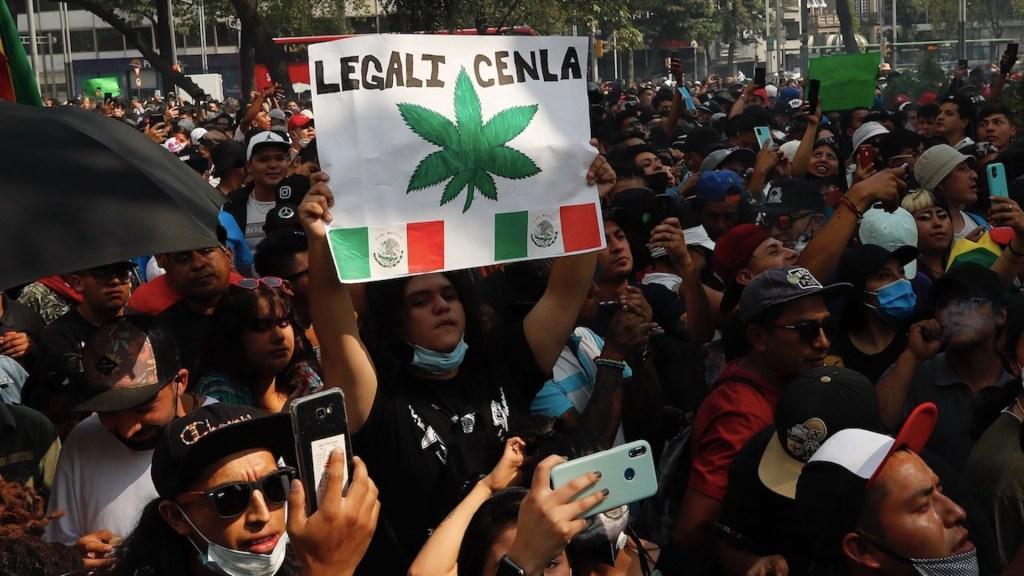 Celebran el Día de la Mariguana pidiendo que nueva ley atienda a consumidores - Manifestantes en las inmediaciones del Senado exigen el uso lúdico de la mariguana en México. Foto de EFE