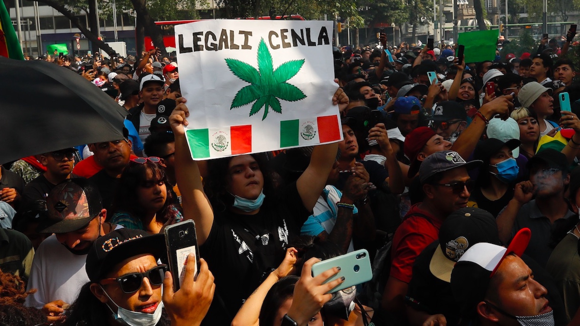 Manifestantes en las inmediaciones del Senado exigen el uso lúdico de la mariguana en México. Foto de EFE