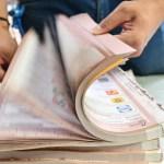 PES, RSP y FxM desaparecerán tras ocho meses; costaron más de 564 mdp