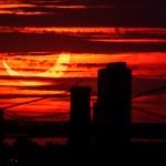 El eclipse anular deja imágenes de un Sol menguante - Eclipse solar Nueva York 10jun21
