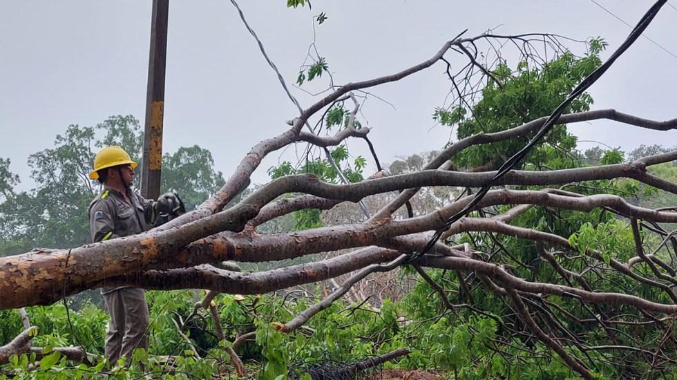 CFE restablece al 80.5 % suministro en estados afectados por la tormenta tropical Dolores - Labores de CFE para restablecer energía tras paso de la tormenta tropical Dolores. Foto de CFE