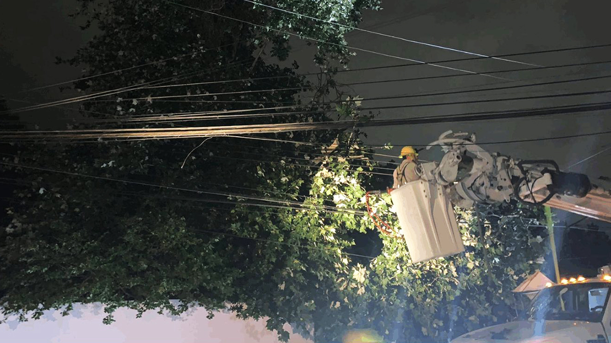 CFE restablece luz a 68 % de usuarios afectados en Nuevo León por frente frío