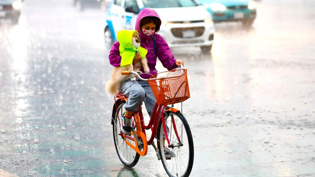 'Enrique' se mantiene como huracán categoría I; provocará lluvias en nueve estados - Mujer bajo la lluvia con su perro. Foto de EFE